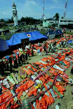 Tsunami+2004+pictures+bodies